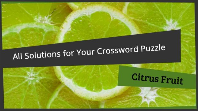 crossword clue citrus fruit